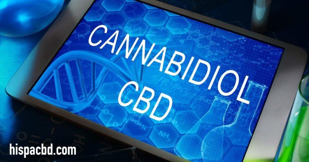 ¿Es el CBD legal en España? ¿Qué dice la Unión Europea? 1
