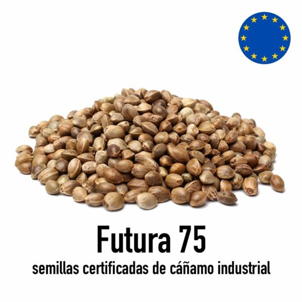 semillas futura 75
