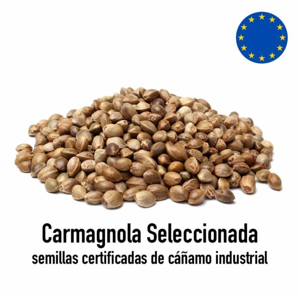 semillas carmagnola seleccionada